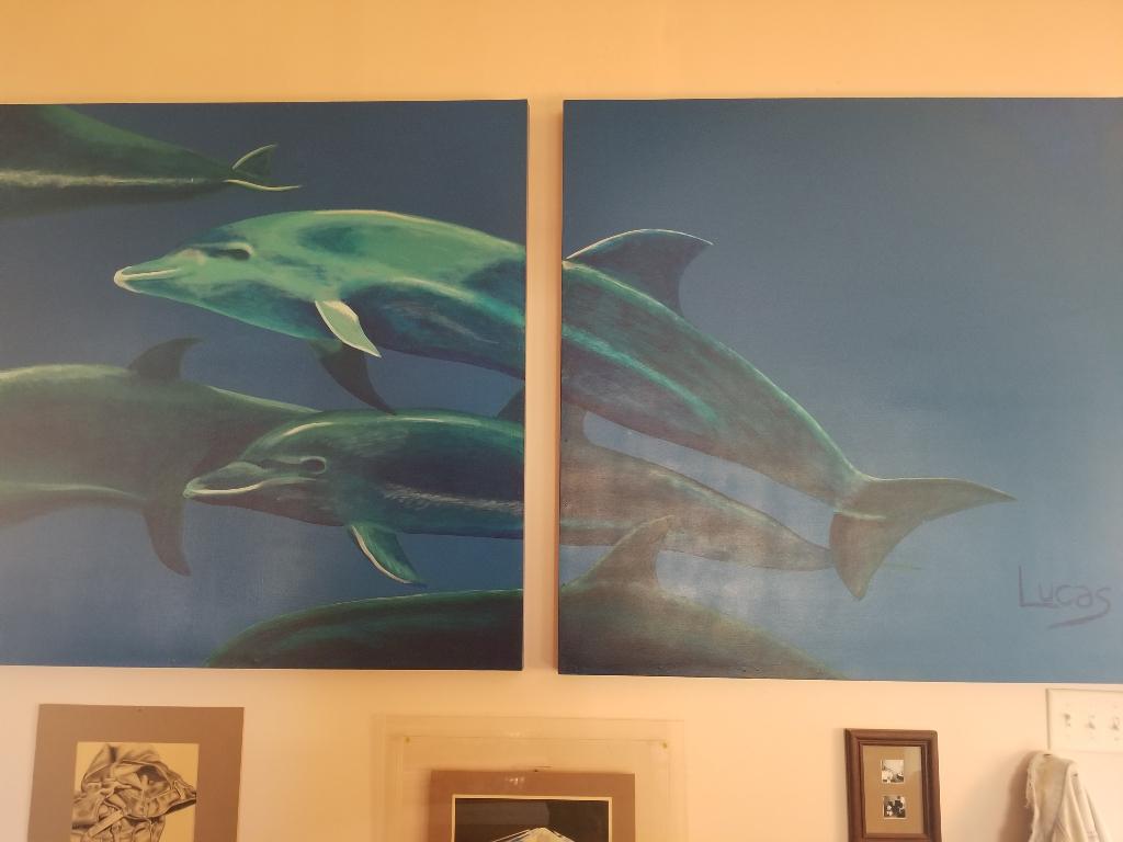 pod of porpoises